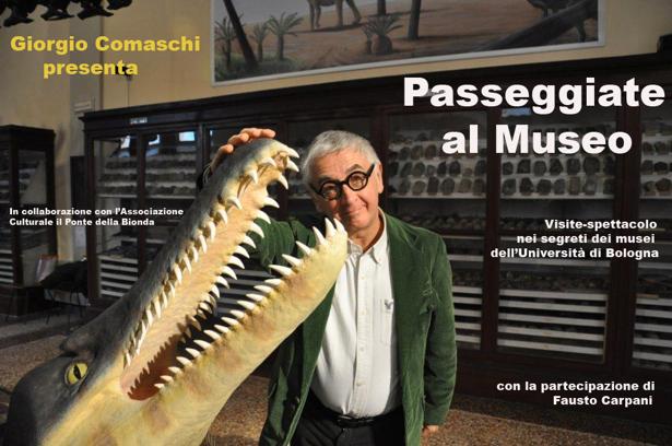 Passeggiate al Museo